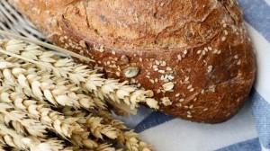 gty_whole_grain__bread_wheat_thg_120207_wblog